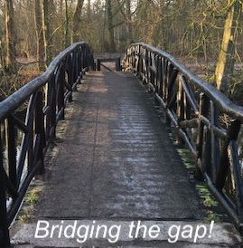 virtual-organizers: bridging the gap - de afstand overbruggen